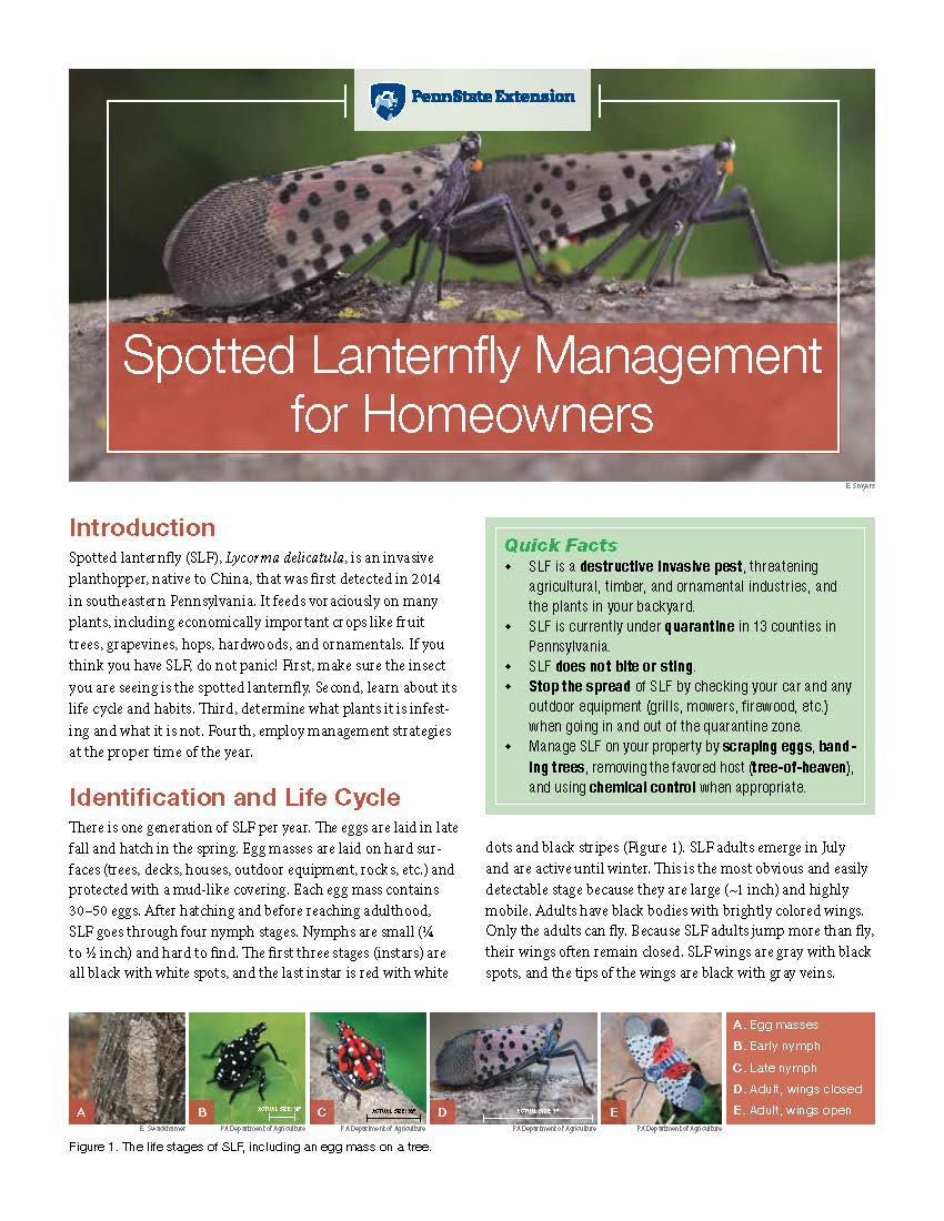 Spotted Lantern Fly  Management (1)