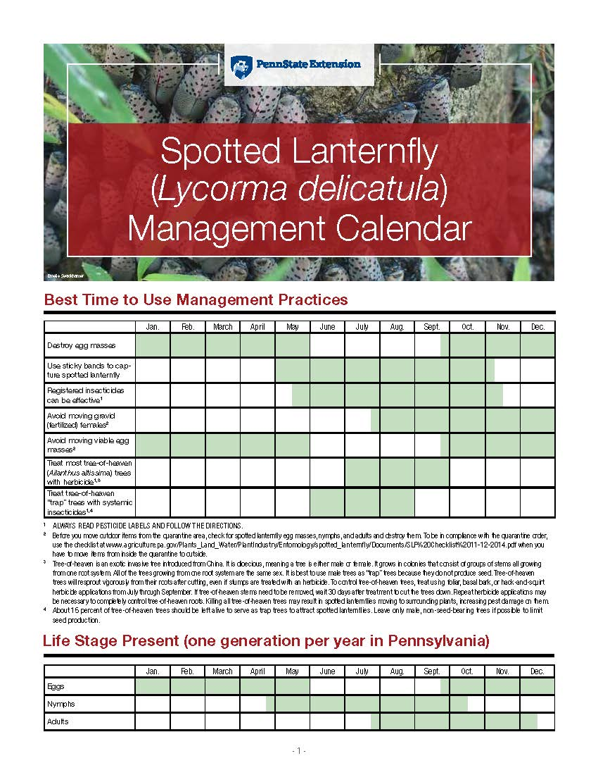 Spotted Lantern Fly  Management (2)